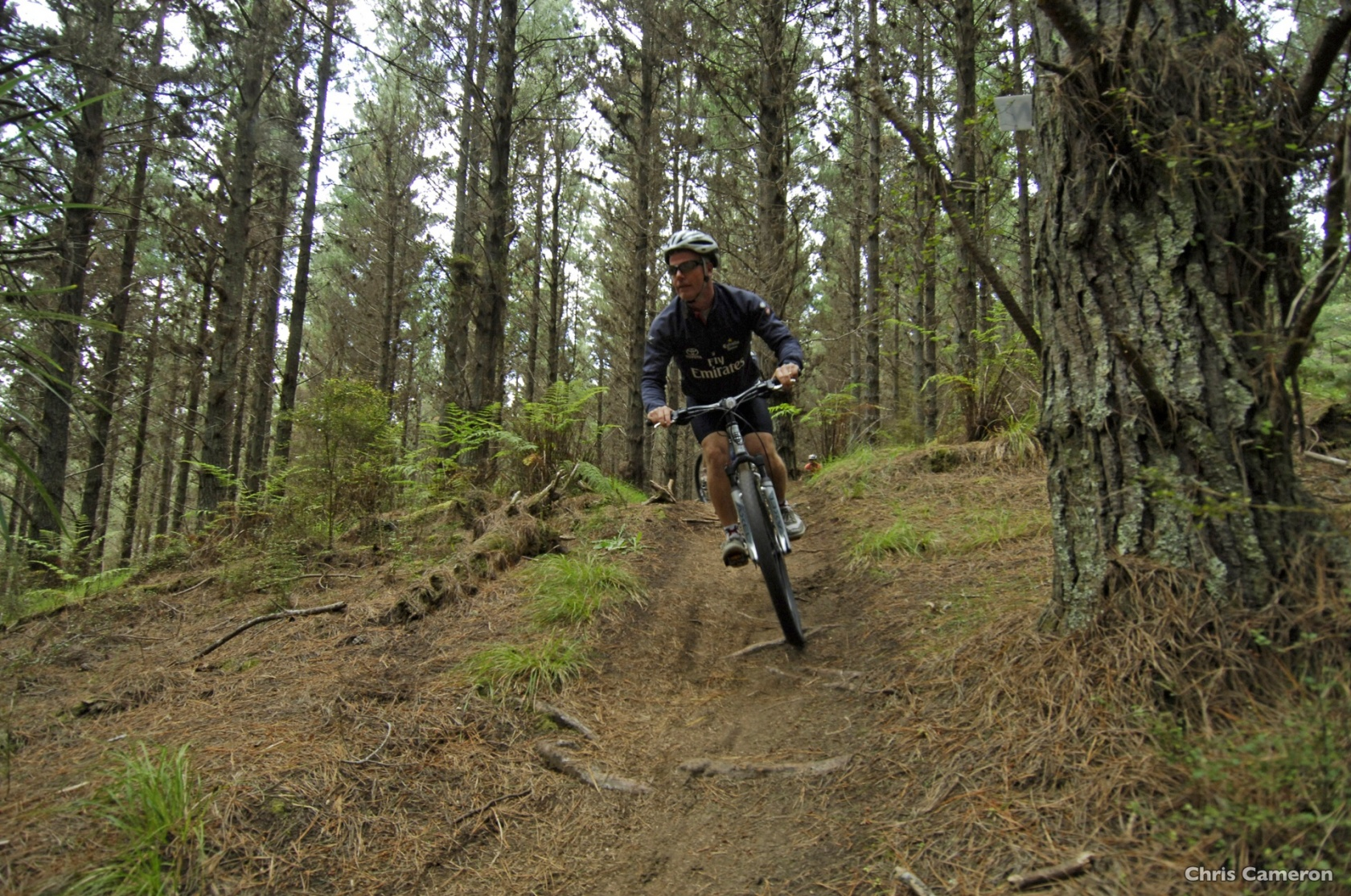 AS13-Woodhill-Forest-Auckland-Chris-Cameron